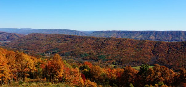 main_graphic