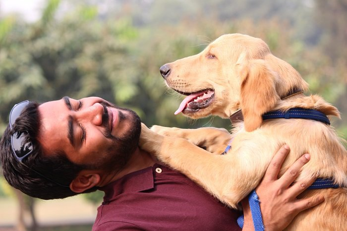Bangalore! Give Your Furry Buddies A 'Paw'some Day At PettinOut For Just INR 199!!