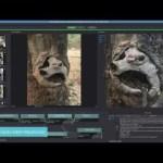 オープンソースのPhotogrammetryフレームワーク『Alice Vision』