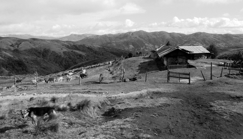 House of Don Jose, the main ranch hand on a llama ranch in the Ecuadorian highlands | Photo by Nelson Guda © 2019