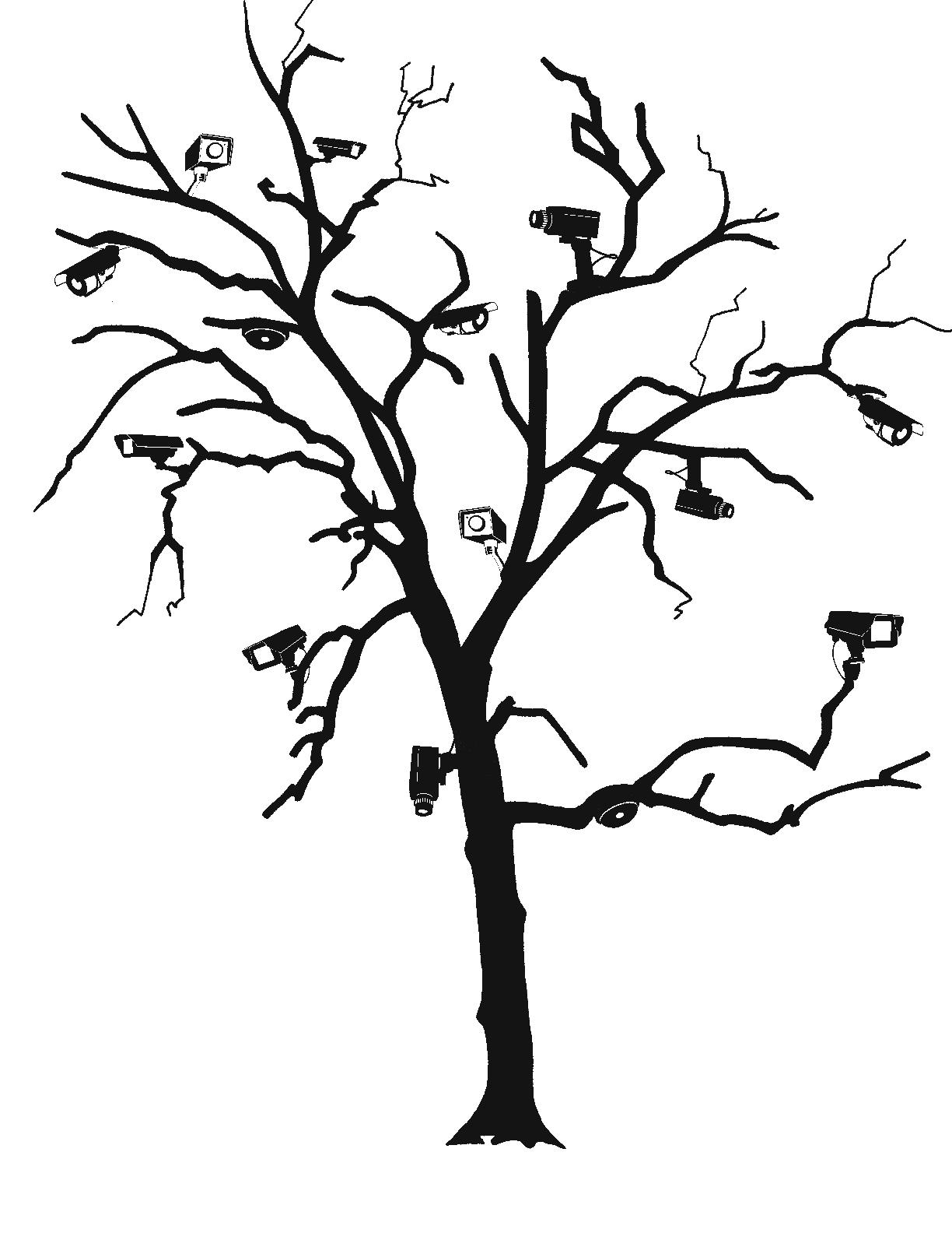 cam_tree