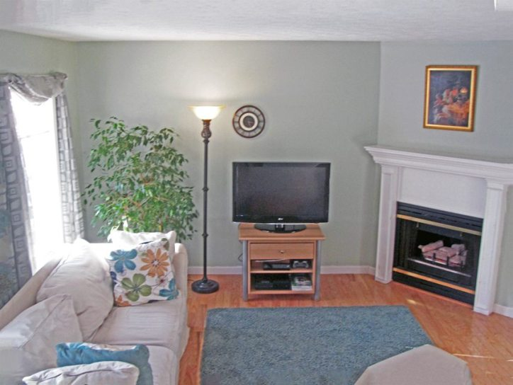 cozy living room features gas fireplace