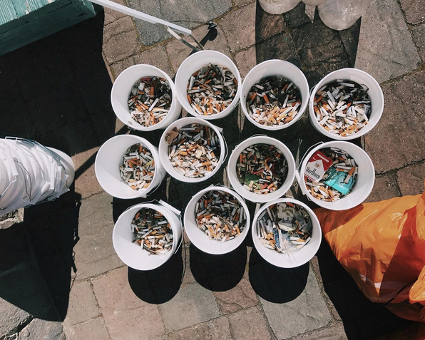 Some of the cigarette butts collected by the volunteers. Photo credit: Pawel Dlugosz.