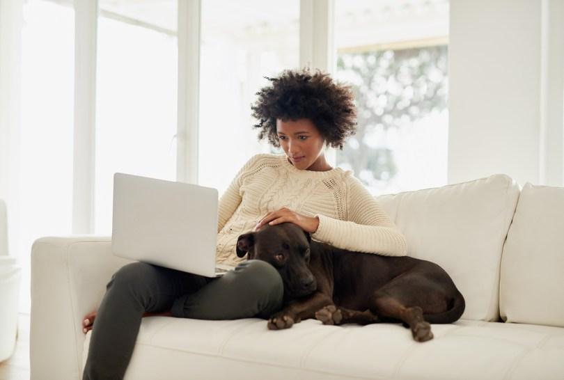 Introducing the Nextdoor Pet Directory | Nextdoor Blog