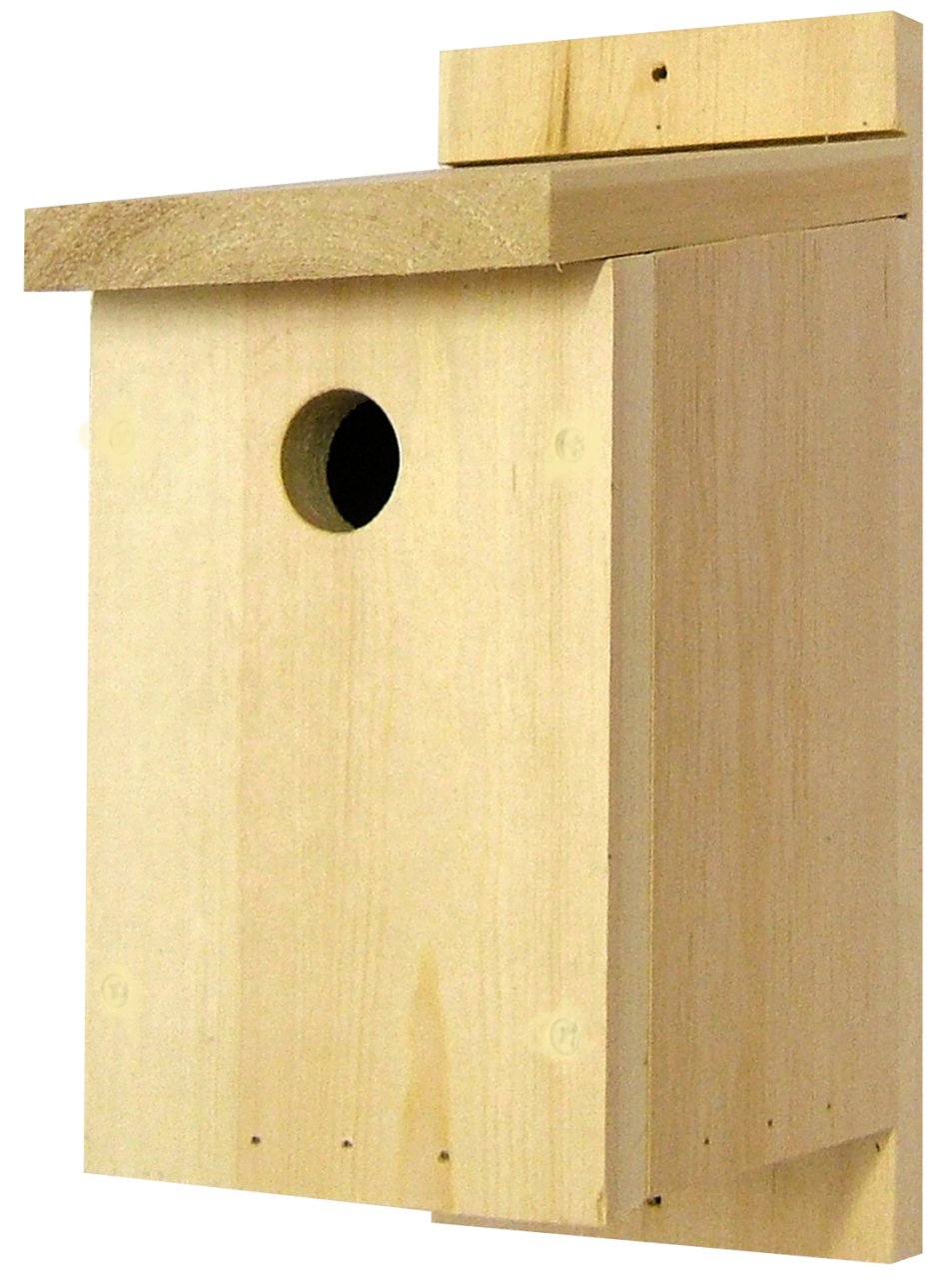 Top 10 Bird Boxes for Walls and Fences  Hoopoe  A blog