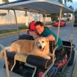 Dog Sitting in Isla Mujeres