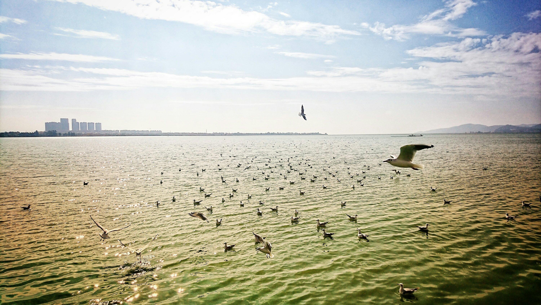 Lake Dian Kunming