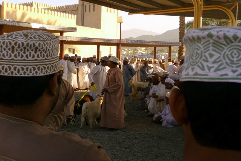 Oman Linsbauer 2-4