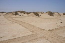 35-Strand-al-Ashkara-125-IMG_0363
