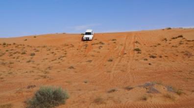 Die Pisten der Wahiba Wüste.