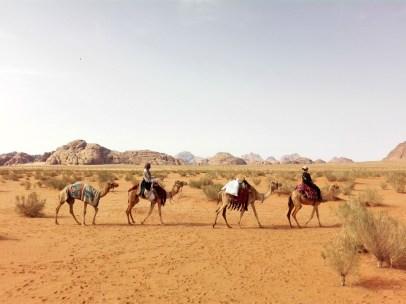 Auf dem Kamel durch die Felsenwüste