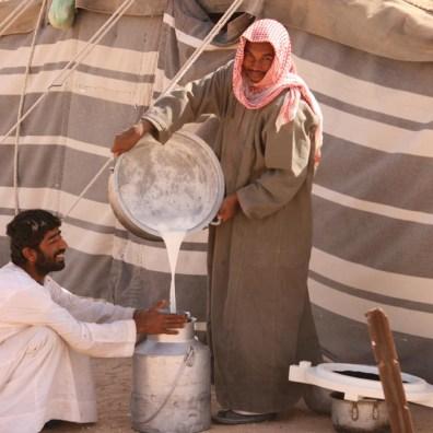 Frische Kamelmilch wird zum Transport abgefüllt.