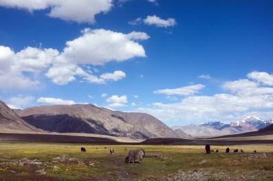 Kirgisistan-Tadschikistan-0859amd