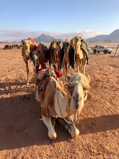 Trekking Reise Jordanien