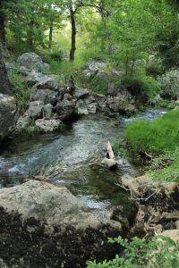Weltnaturerbe Hyrkanischer Wald