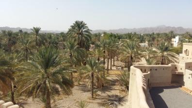 Blick von der Festung auf die Palmgärten