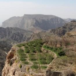 Gärten im sonst kargen Hajjar Gebirge