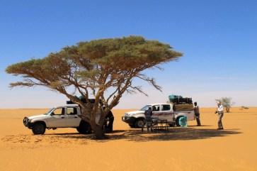 Zwischenstopp in der Wüste