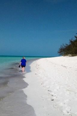 Traumstrand Heron Island 3