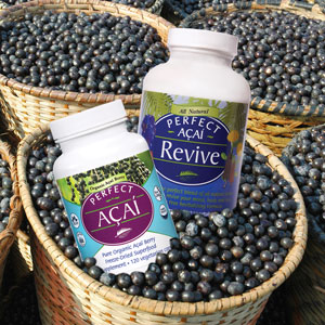 Perfect Acai Revive is made from 100% real, ethically sourced, organic acai berries.