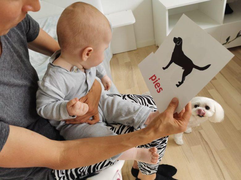 dziecko uczące się z fiszek