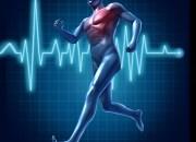 Η Αξία του Προληπτικού Καρδιολογικού Ελέγχου