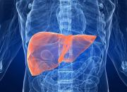 Ηπατοκυτταρικό καρκίνωμα: όσα πρέπει να γνωρίζετε