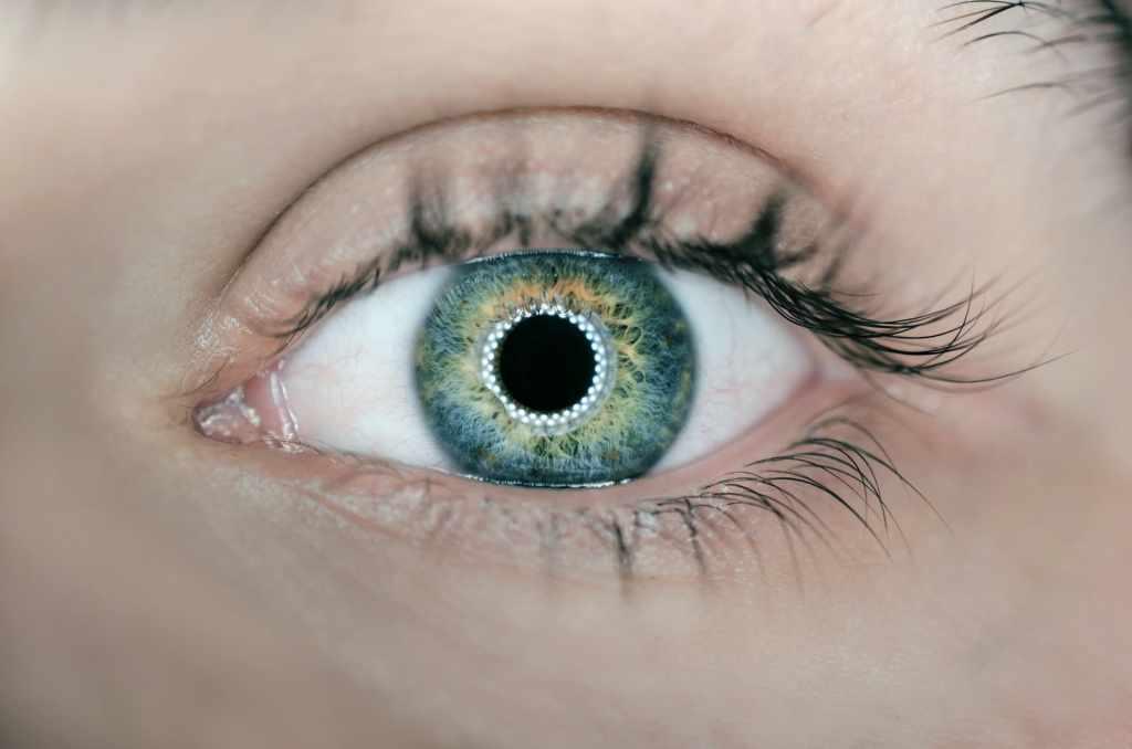 Ojo humano color verde siendo registrado por reconocimiento facial para obtener datos biométricos
