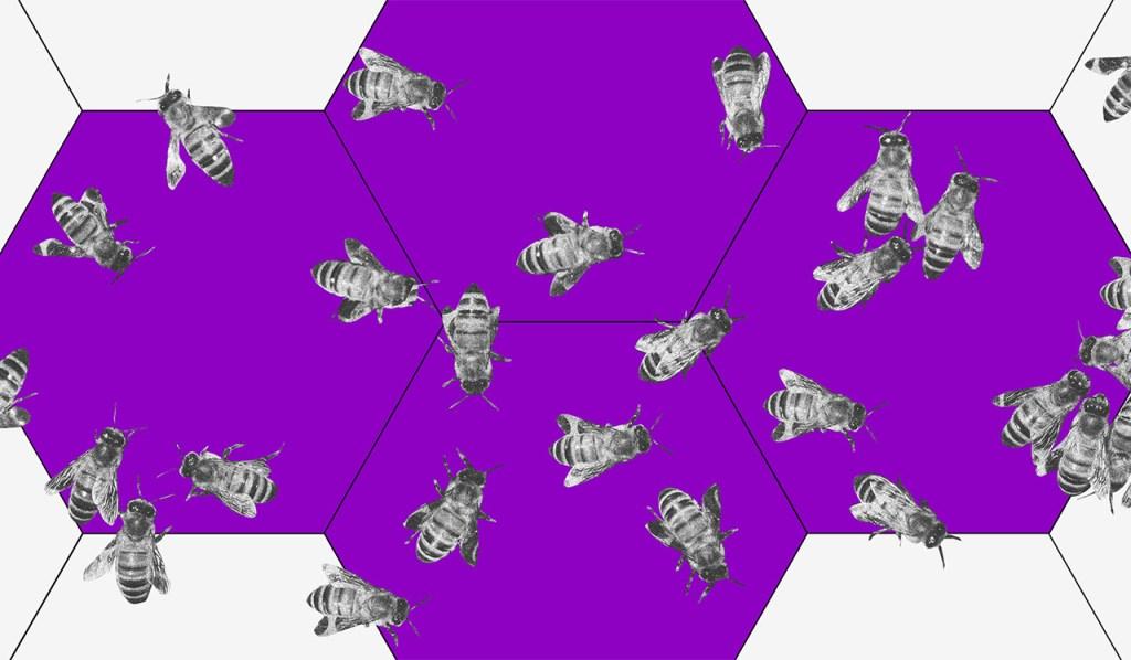 Colmeia roxa com várias abelhas