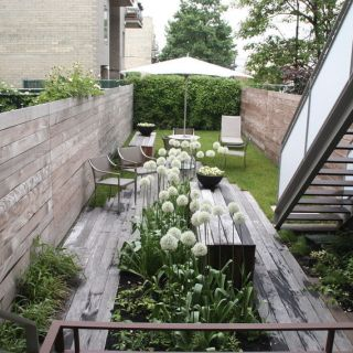 Small Space, Big Solutions: Urban Gardening