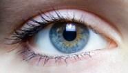 Iris_yeux