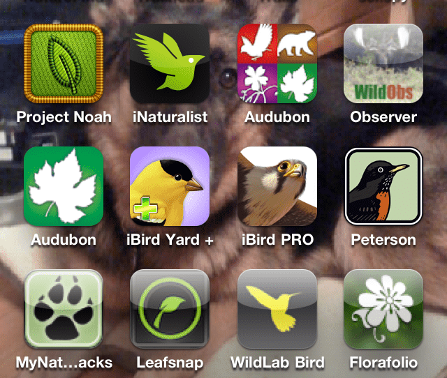 25 Nature And Wildlife Mobile Apps  E2 80 A2 The National Wildlife Federation Blog The National Wildlife Federation Blog