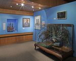 'Colour' exhibition at Whanganui Regional Museum