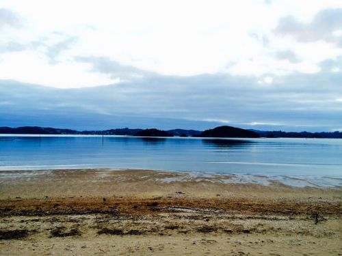 Across the road from Te Tii Marae, Waitangi, courtesy of Rhonda Paku 1