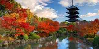 Japonya Nara Gezilecek Yerler