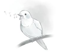 image of bird singing