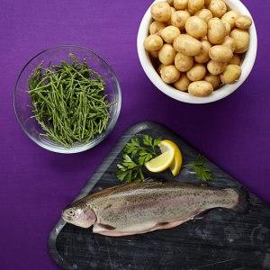 Whole trout fish bundle