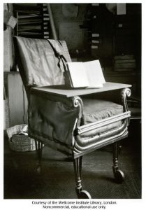 Charles Darwin is a Pioneer of the Modern-Day Office Chair