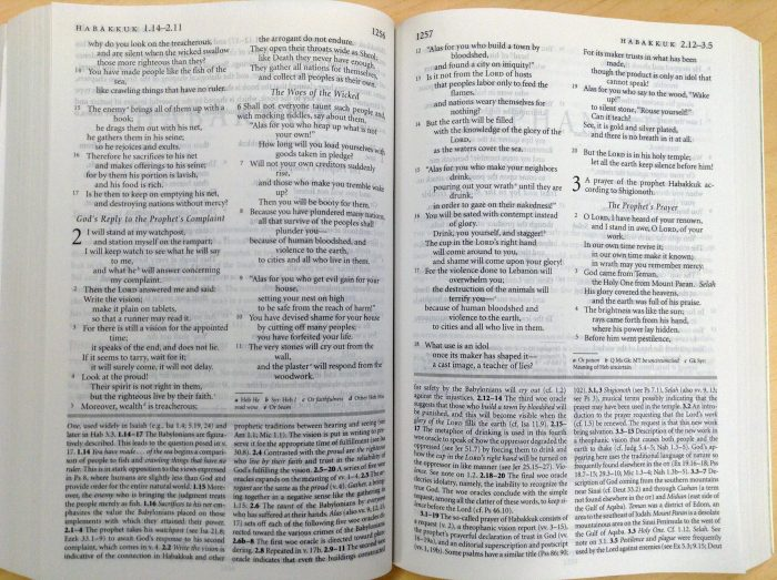 Study Bible Vs Commentary Olive Tree Blog