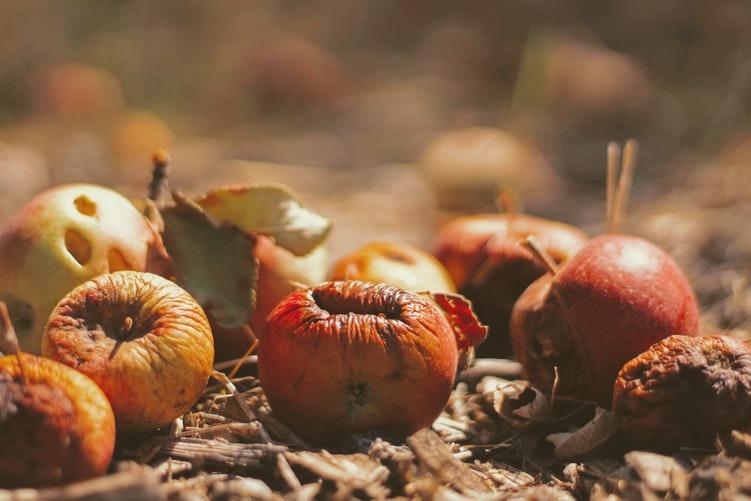 Reduz o desperdício alimentar em 7 passos title