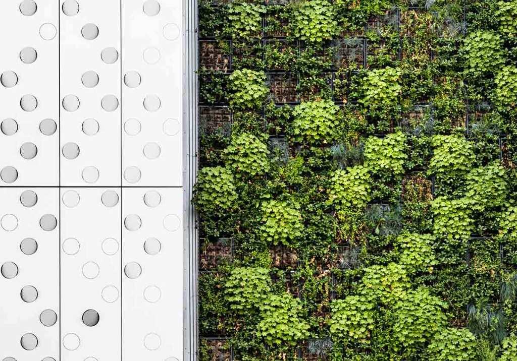 Constrói o teu próprio jardim vertical em casa em 6 passos title
