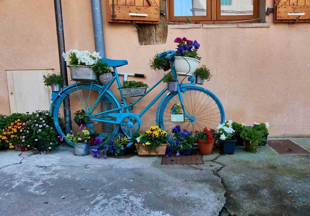 Bicicleta azul com flores em vasos
