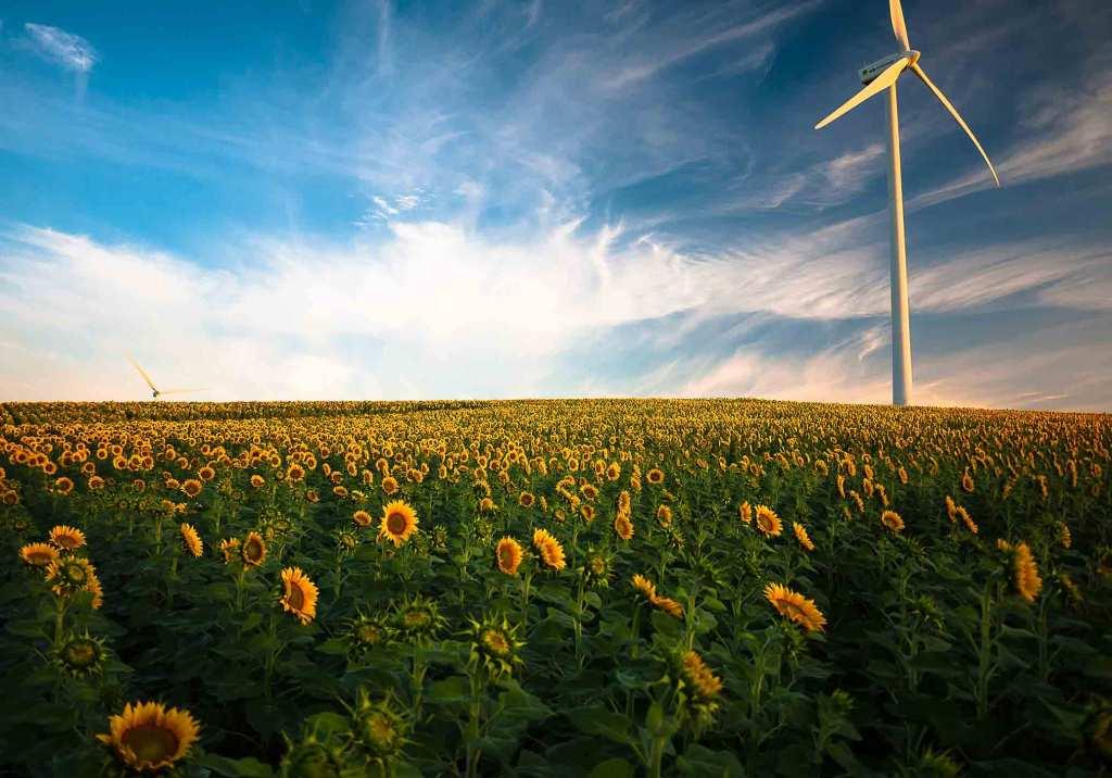 O que é a energia verde? title