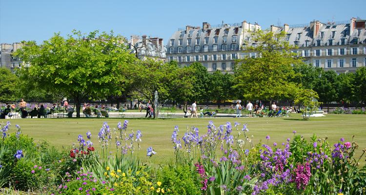 jardin_tuileries
