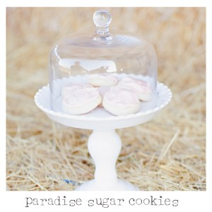 Paradise Sugar Cookie Recipes