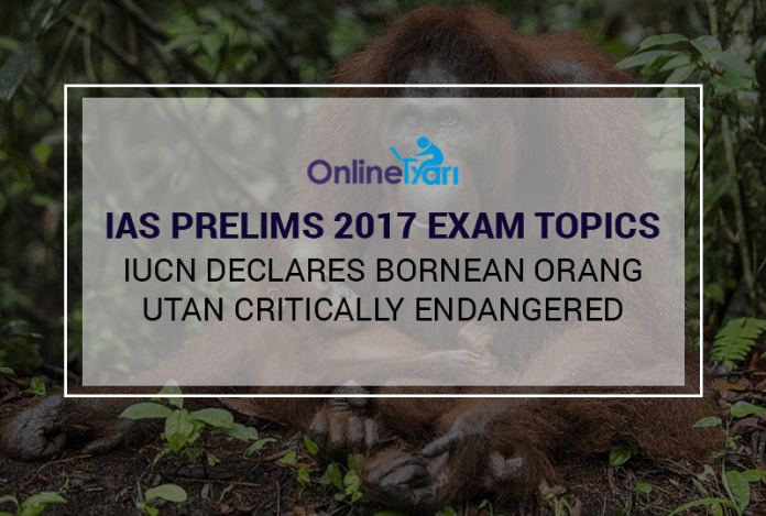 IAS Prelims 2017 Exam Topics: IUCN declares Bornean Orang-utan critically endangered