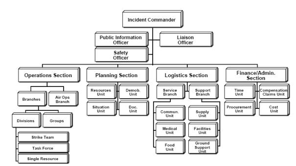 ICS Organisation Chart