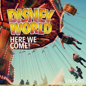 Organo Disney Incentive