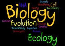 ICSE Class X Biology Sample Paper