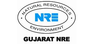 Placement criteria for Gujarat NRE Coke Limited